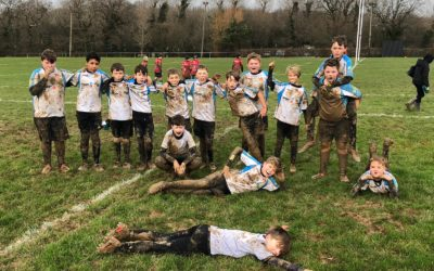 BHRFC Youth – Under 12's Vs Haywards Heath